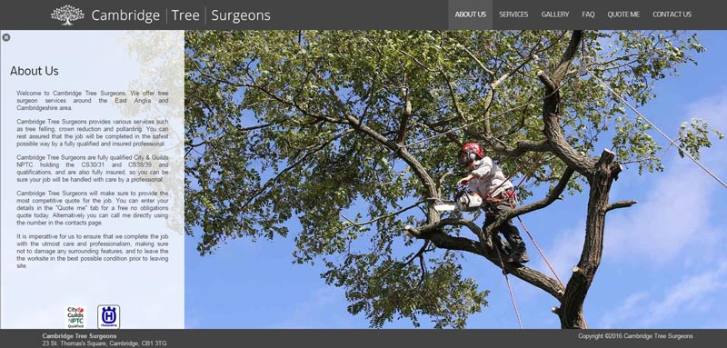 cambridge-tree-surgeons
